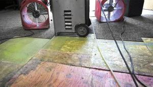 Water Damage Repair Costs Orlando